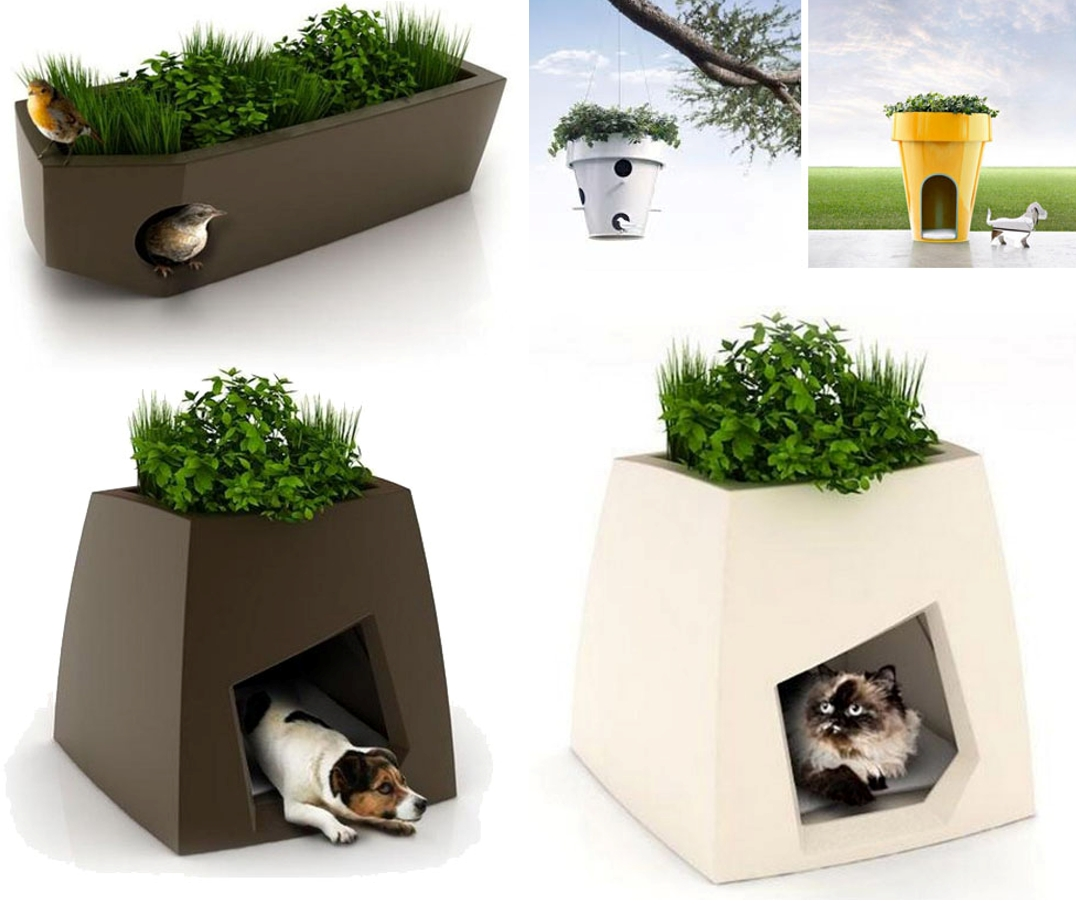 green roofed homes for your pet s mecc interiors design bites