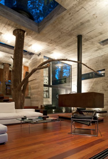 a tree runs through it | @meccinteriors | design bites